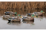 Avian-X Early-Season Mallard Decoys