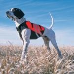 Жилет для собаки  Ripstop Chest Protector